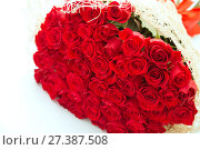 Купить «Large bouquet of fifty red roses in a gift wrapper on a white background», фото № 27387508, снято 6 февраля 2017 г. (c) Юлия Бабкина / Фотобанк Лори