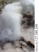 Bolshoi geyser, Geysers Valley, Kronotsky Reserve, Kamchatka. Гейзер Большой в Долине гейзеров, Кроноцкий заповедник, Камчатка (2017 год). Редакционное фото, фотограф Роза Ибрагимова / Фотобанк Лори