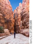 Купить «Дорога между красными скалами в древний город Петра, Иордания», фото № 27388688, снято 4 ноября 2016 г. (c) Наталья Волкова / Фотобанк Лори