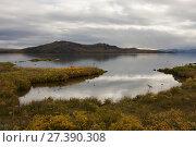 Купить «Thingvallavatn, on rift between North American and Eurasian tectonic plates at Thingvellir, Thingvellir National Park, UNESCO World Heritage Site, Iceland...», фото № 27390308, снято 20 апреля 2018 г. (c) Nature Picture Library / Фотобанк Лори