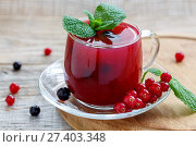 Glass cup with pudding of red and black currants and sprig of mint. Стоковое фото, фотограф Марина Сапрунова / Фотобанк Лори