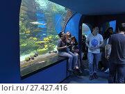 Купить «Посетители осматривают тропических морских обитателей. Дельфинарий  «Дельфиния», город Новосибирск, улица Жуковского, 100/4», фото № 27427416, снято 13 апреля 2017 г. (c) Григорий Писоцкий / Фотобанк Лори