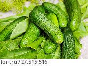 Купить «Cucumber», фото № 27515516, снято 23 января 2020 г. (c) easy Fotostock / Фотобанк Лори