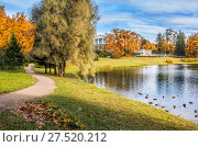 Купить «Утиное раздолье pond with ducks  in Tsarskoye Selo», фото № 27520212, снято 5 октября 2013 г. (c) Baturina Yuliya / Фотобанк Лори