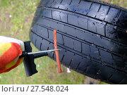 Купить «Готовим резиновый жгут для установки в отверстие в шине бескамерного колеса», фото № 27548024, снято 28 мая 2017 г. (c) Анатолий Заводсков / Фотобанк Лори