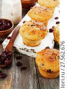 Купить «Muffins with dried cranberries», фото № 27562676, снято 15 декабря 2017 г. (c) Надежда Мишкова / Фотобанк Лори