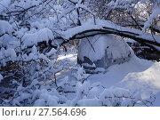 Купить «Москва, последствия затяжных снегопадов во дворе жилого дома», фото № 27564696, снято 6 февраля 2018 г. (c) glokaya_kuzdra / Фотобанк Лори