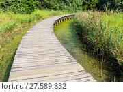Купить «Wooden walkway», фото № 27589832, снято 23 февраля 2019 г. (c) PantherMedia / Фотобанк Лори