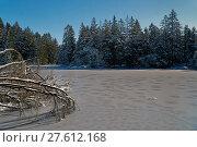 Купить «winter ice frozen switzerland february», фото № 27612168, снято 19 марта 2019 г. (c) PantherMedia / Фотобанк Лори