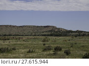 Купить «A mesa in the Black Mesa area of Oklahoma.», фото № 27615944, снято 19 октября 2018 г. (c) PantherMedia / Фотобанк Лори