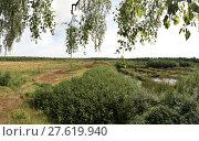 Купить «large moor at neudorf-platendorf», фото № 27619940, снято 22 июля 2019 г. (c) PantherMedia / Фотобанк Лори