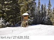 Купить «winter snow alps ski skiing», фото № 27620332, снято 23 мая 2019 г. (c) PantherMedia / Фотобанк Лори