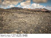 Купить «volcanic landscape at timanfaya national park,lanzarote island,canary islands,spain», фото № 27625948, снято 16 июня 2019 г. (c) PantherMedia / Фотобанк Лори