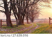 Купить «Spring countryside sunset. Old country road in the park», фото № 27639016, снято 14 октября 2019 г. (c) PantherMedia / Фотобанк Лори