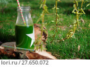 Купить «Green smoothie with spinach, apple and coconat (exterior shot)», фото № 27650072, снято 19 августа 2018 г. (c) easy Fotostock / Фотобанк Лори
