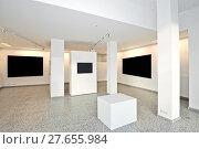 Купить «exhibition gallery with museum style lighting», фото № 27655984, снято 22 июля 2019 г. (c) PantherMedia / Фотобанк Лори