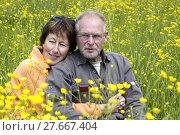 Купить «Senior couple in a buttercup field», фото № 27667404, снято 20 марта 2019 г. (c) PantherMedia / Фотобанк Лори