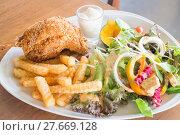Купить «Deep fried chicken meat with organic salad», фото № 27669128, снято 21 сентября 2019 г. (c) PantherMedia / Фотобанк Лори