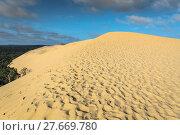 Купить «dune du pilat at 114 metres the highest sand dune in europe near arcachon gironde aquitaine france», фото № 27669780, снято 18 июля 2019 г. (c) PantherMedia / Фотобанк Лори