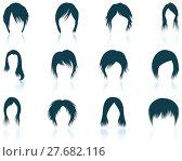 Купить «Set of woman's hairstyles icons», иллюстрация № 27682116 (c) PantherMedia / Фотобанк Лори