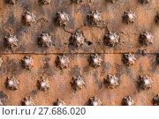 Купить «Ancient wooden spiked door detail i», фото № 27686020, снято 26 апреля 2018 г. (c) PantherMedia / Фотобанк Лори