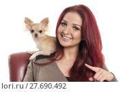 Купить «pretty red-haired woman with a small pet dog», фото № 27690492, снято 18 августа 2019 г. (c) PantherMedia / Фотобанк Лори