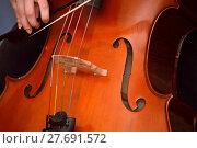 Купить «Cellist playing cello», фото № 27691572, снято 24 февраля 2018 г. (c) PantherMedia / Фотобанк Лори