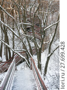 Купить «Ladder in park Kolomna», фото № 27699428, снято 16 января 2011 г. (c) Юрий Бизгаймер / Фотобанк Лори