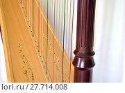 Купить «Pedal harp detail», фото № 27714008, снято 20 марта 2018 г. (c) PantherMedia / Фотобанк Лори