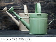 Купить «Simple Green and White Metallic Watering Cans», фото № 27736732, снято 21 февраля 2019 г. (c) PantherMedia / Фотобанк Лори