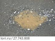 Купить «dried puddle of water on gravel road», фото № 27743808, снято 17 января 2019 г. (c) PantherMedia / Фотобанк Лори