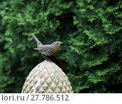 Купить «robin,garden ornaments», фото № 27786512, снято 16 февраля 2019 г. (c) PantherMedia / Фотобанк Лори