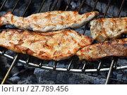 Купить «Chicken or turkey steak ready cooked on grill», фото № 27789456, снято 17 июля 2019 г. (c) PantherMedia / Фотобанк Лори