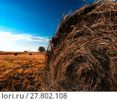 Купить «Orange hayrick/haystack», фото № 27802108, снято 19 декабря 2018 г. (c) PantherMedia / Фотобанк Лори