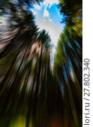 Купить «Vertical vivid radial blur zoom forest into the sky background b», фото № 27802340, снято 19 января 2019 г. (c) PantherMedia / Фотобанк Лори