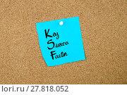 Купить «Business Acronym KSF as Key Success Factor», фото № 27818052, снято 18 марта 2018 г. (c) PantherMedia / Фотобанк Лори