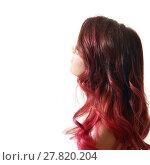Купить «Hairstyle Ombre Fashion», фото № 27820204, снято 27 марта 2019 г. (c) PantherMedia / Фотобанк Лори