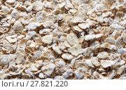 Купить «Healthy Oats Texture», фото № 27821220, снято 29 января 2018 г. (c) Александр Лычагин / Фотобанк Лори