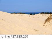 Купить «dune in poland», фото № 27825260, снято 22 июля 2019 г. (c) PantherMedia / Фотобанк Лори