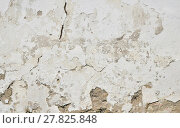 Купить «Old white painted plaster wall with cracks and stains», фото № 27825848, снято 26 мая 2018 г. (c) PantherMedia / Фотобанк Лори