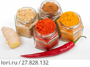 Купить «Various spices ginger, chilli, turmeric in glass jars », фото № 27828132, снято 20 сентября 2019 г. (c) PantherMedia / Фотобанк Лори