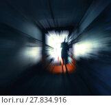 Купить «Horizontal vivid stalker exploring the tunnels motion abstractio», фото № 27834916, снято 23 марта 2019 г. (c) PantherMedia / Фотобанк Лори