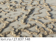 Купить «pattern of field in Salt refinery, Saline from Janubio», фото № 27837148, снято 20 июня 2018 г. (c) PantherMedia / Фотобанк Лори