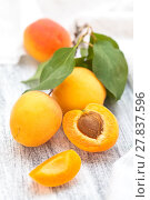 Купить «Fresh ripe apricots .», фото № 27837596, снято 20 июня 2018 г. (c) PantherMedia / Фотобанк Лори