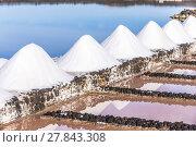 Купить «salt piles in the saline of Janubio», фото № 27843308, снято 20 июня 2018 г. (c) PantherMedia / Фотобанк Лори