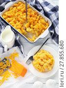 Купить «Mac and Cheese on a plate», фото № 27855680, снято 6 февраля 2018 г. (c) Oksana Zh / Фотобанк Лори