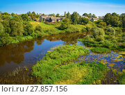 Купить «River with thickets of trees», фото № 27857156, снято 19 февраля 2019 г. (c) PantherMedia / Фотобанк Лори