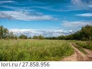 Купить «Road through a field with green grass», фото № 27858956, снято 19 февраля 2019 г. (c) PantherMedia / Фотобанк Лори