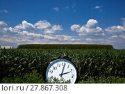 Купить «Big clock at noon in a green field», фото № 27867308, снято 20 сентября 2019 г. (c) PantherMedia / Фотобанк Лори