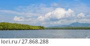 Купить «Mangrove forest in Phang Nga Bay National Park, Thailand», фото № 27868288, снято 22 июля 2019 г. (c) PantherMedia / Фотобанк Лори
